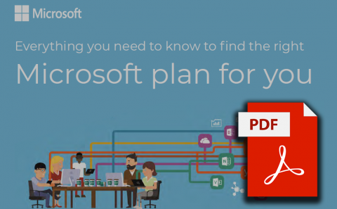 Office 365 Plans Infographic